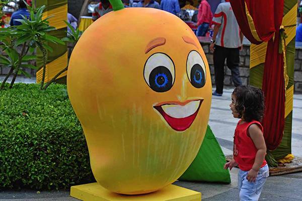 Mango Festival (3)